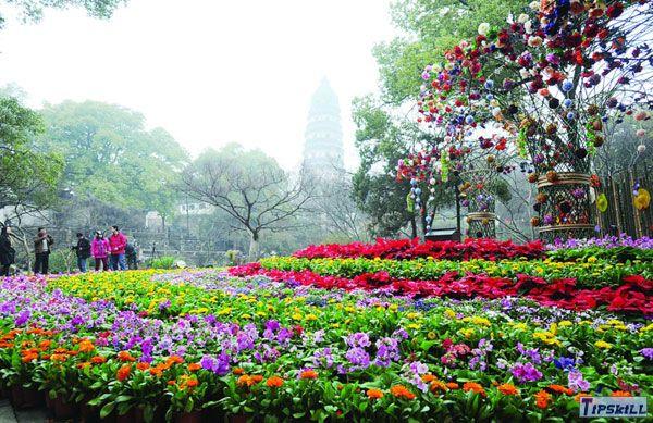 虎丘花卉节