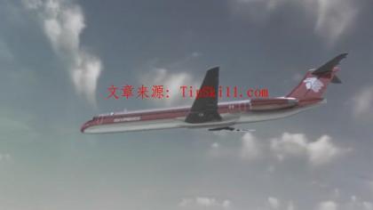 国家地理.空中浩劫.致命撞机.N.G.air.crash.investigation.collision.over.la.HDTV.MiniSD-TLF[21-50-47].JPG